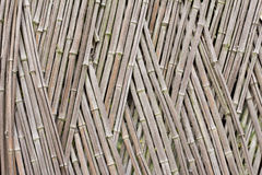 Bamboo Fence. Around the villa in Shanghai Royalty Free Stock Photos