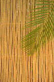 Bamboo Fence. A Bamboo Fence And Palm Tree Leaf In The Tropics Stock Photography