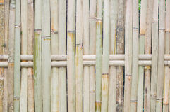 Bamboo fence. In the rural, Thailand royalty free stock images
