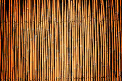 Bamboo fence. The yellow bamboo fence background Royalty Free Stock Photo
