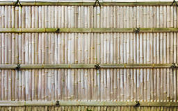 Bamboo Fence. A typical Japanese bamboo fence outside of a Japanese house Stock Image