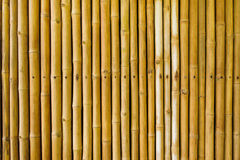 Free Bamboo Fence Royalty Free Stock Images - 54213419