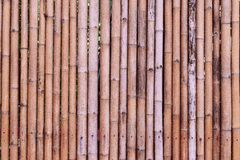 Bamboo. Fence  array  texture background Royalty Free Stock Photo