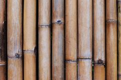 Bamboo. Fence  array  texture background Royalty Free Stock Photos