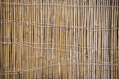 Bamboo Fence Art. Stock Images