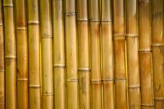 Free Bamboo Fence Background Royalty Free Stock Image - 104077866