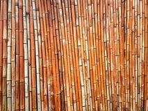 Bamboo fence background. Bamboo stalks lined up in a row. royalty free stock photography