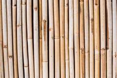 Bamboo fence background Stock Photo
