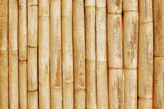 Bamboo fence background close up Royalty Free Stock Photography