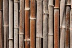 Bamboo fence background Royalty Free Stock Photos