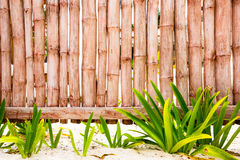 Bamboo fence background. Fence made of bamboo with green plants and white sand Stock Photos