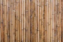 Bamboo fence background Royalty Free Stock Image
