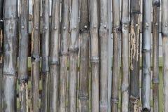 Bamboo fence background. Bamboo fence on steel frame Stock Photo