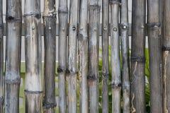 Bamboo fence background. Bamboo fence on steel frame Stock Image