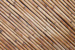 Bamboo fence background. The bamboo surface is tilted on the walls and decorating the house Stock Image