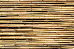 Bamboo fence background Royalty Free Stock Photography