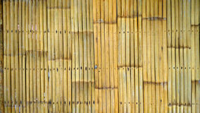 Bamboo fence background Stock Images