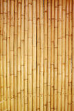 Bamboo fence background. Texture brown bamboo fence background Royalty Free Stock Photos