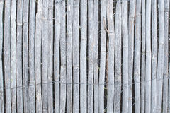 Bamboo fence background texture Stock Photos