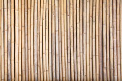Bamboo fence. Background and texture of natural bamboo fence Stock Photo