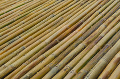 Bamboo fence background texture pattern Royalty Free Stock Images