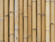 Bamboo fence background texture pattern Royalty Free Stock Photo