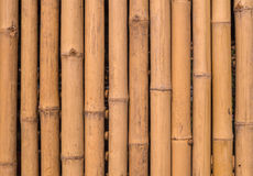 Bamboo fence background texture pattern Royalty Free Stock Photography