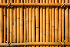 Bamboo fence background texture with rope tide at head Royalty Free Stock Photography