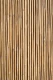 Bamboo fence background Stock Images