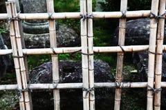 Bamboo fence Stock Image