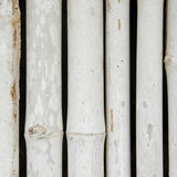 Bamboo fence Stock Photos