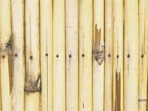 Bamboo fence closeup Stock Photos