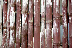 The bamboo fence Royalty Free Stock Photos