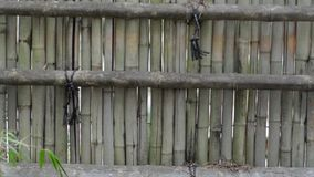 Bamboo Fence stock video footage