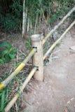 Bamboo fence. Royalty Free Stock Photos