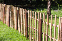 Bamboo fence. In garden royalty free stock image