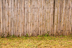 Bamboo fence. In the garden, Asean style Stock Image