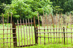 Bamboo fence. On  the  grasses  field Royalty Free Stock Images