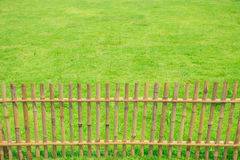 Bamboo fence with green grass Stock Images