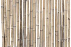 Bamboo fence isolated on white background. clipping path.  royalty free stock images