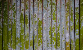Bamboo fence in the Japanese garden Royalty Free Stock Images