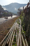 Bamboo Fence Laos Royalty Free Stock Photo