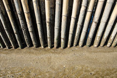 Bamboo fence in mud beach Stock Photography