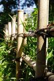 Bamboo fence. Near the grass, Japan Royalty Free Stock Photography