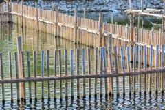 Bamboo fence near the sea Royalty Free Stock Photos