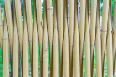 Bamboo fence Stock Images