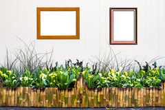 Bamboo fence with Ornamental plants Stock Image