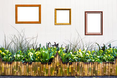 Bamboo fence with Ornamental plants Stock Photo