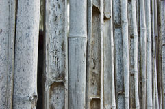 Bamboo fence outdated Royalty Free Stock Images