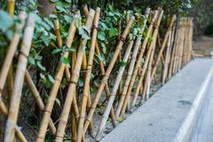 The bamboo fence. Outdoor bamboo fence in garden Royalty Free Stock Images